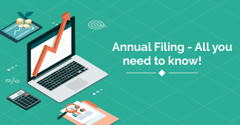 Annual corporate filings